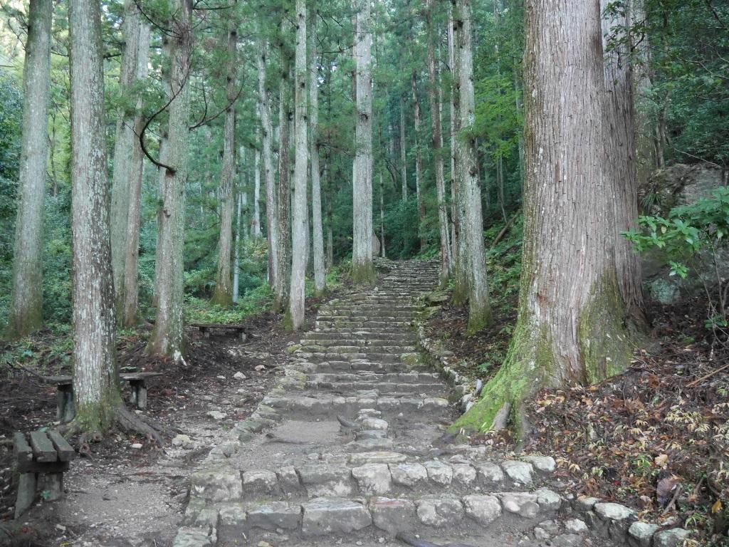 f:id:gomashio-oyaji:20201009222751j:plain