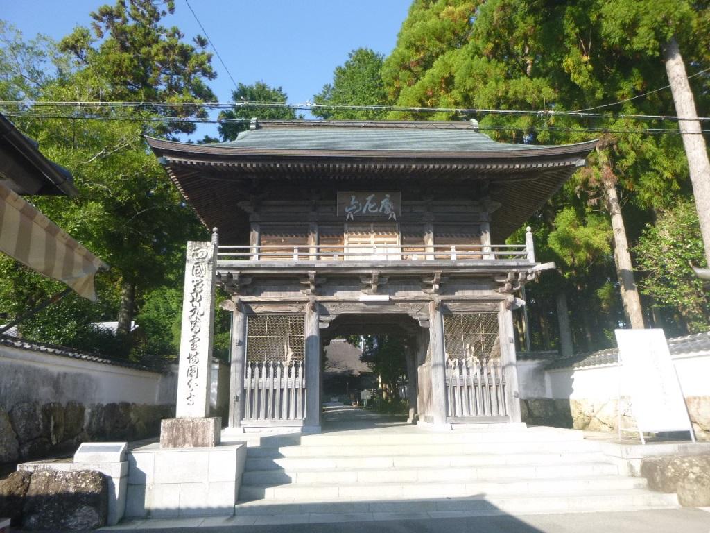 f:id:gomashio-oyaji:20201124220901j:plain