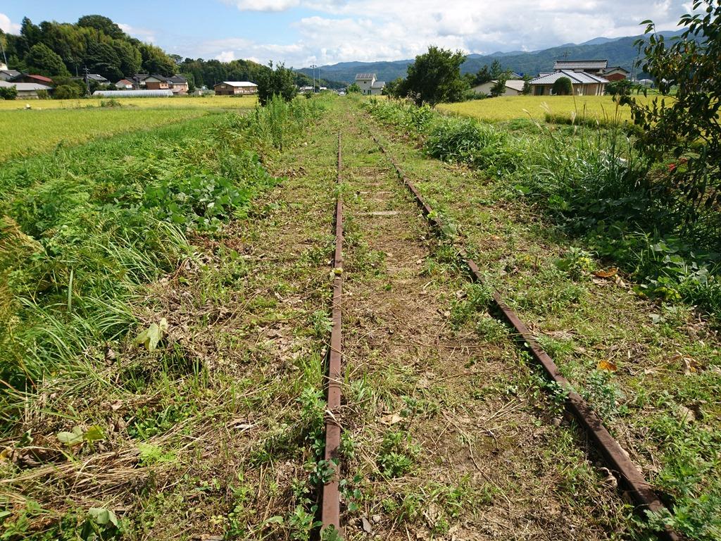 f:id:gomashio-oyaji:20210111185055j:plain
