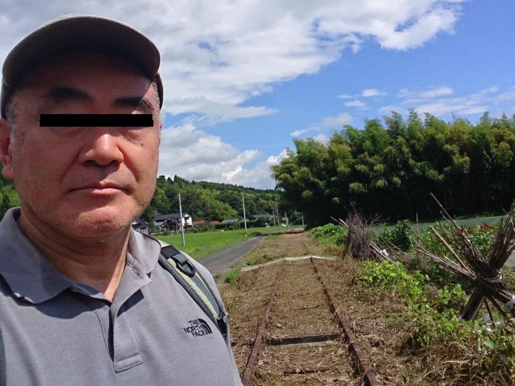f:id:gomashio-oyaji:20210111185138j:plain