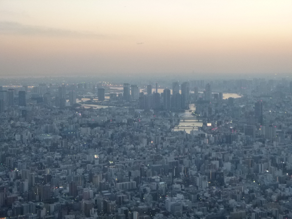 f:id:gomashio-oyaji:20210311221633j:plain