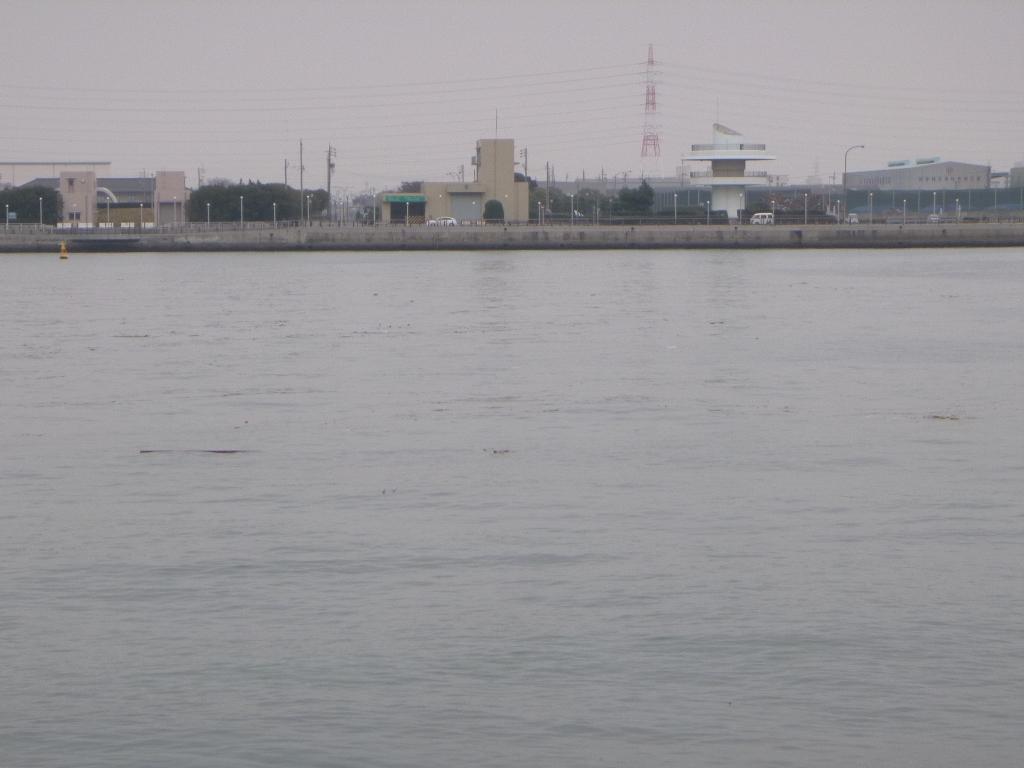 f:id:gomashio-oyaji:20210328153403j:plain