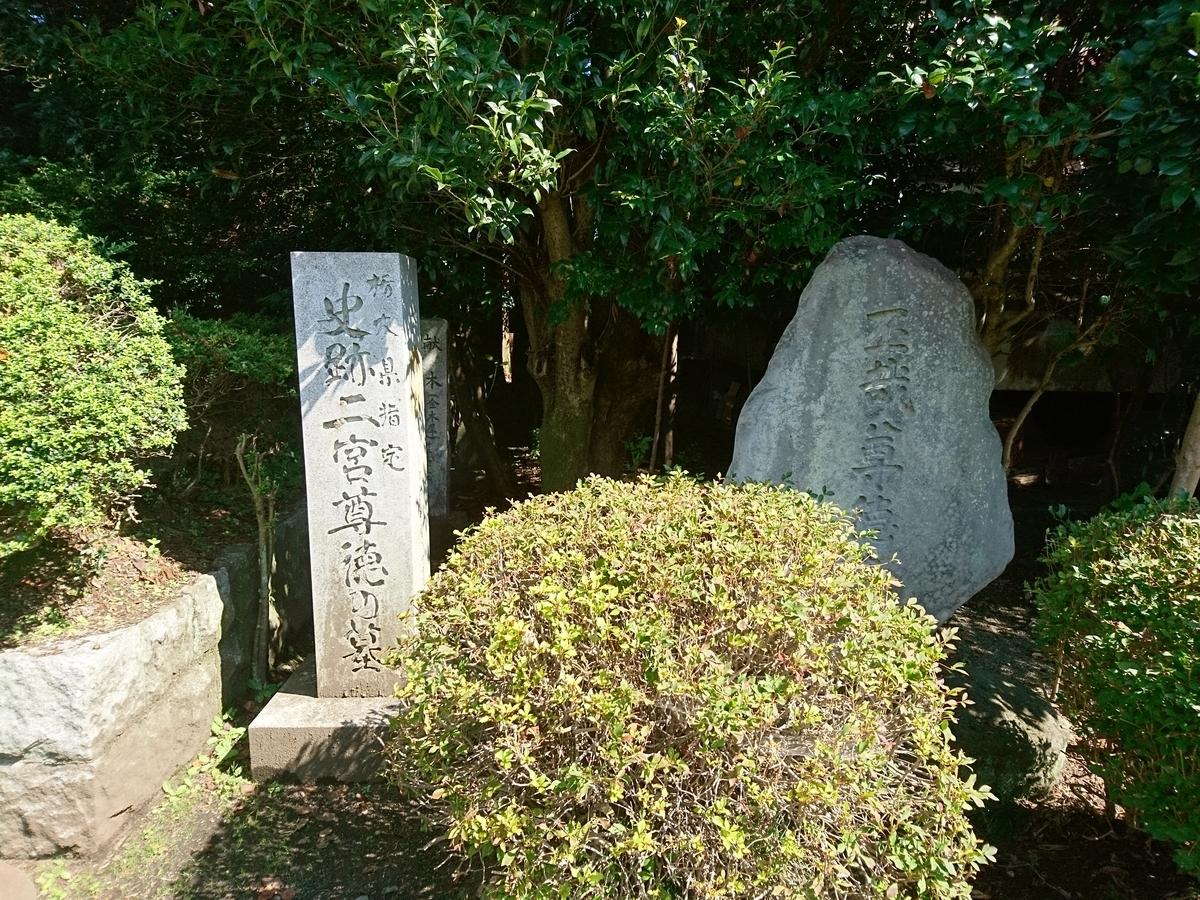f:id:gomashio-oyaji:20210501213841j:plain