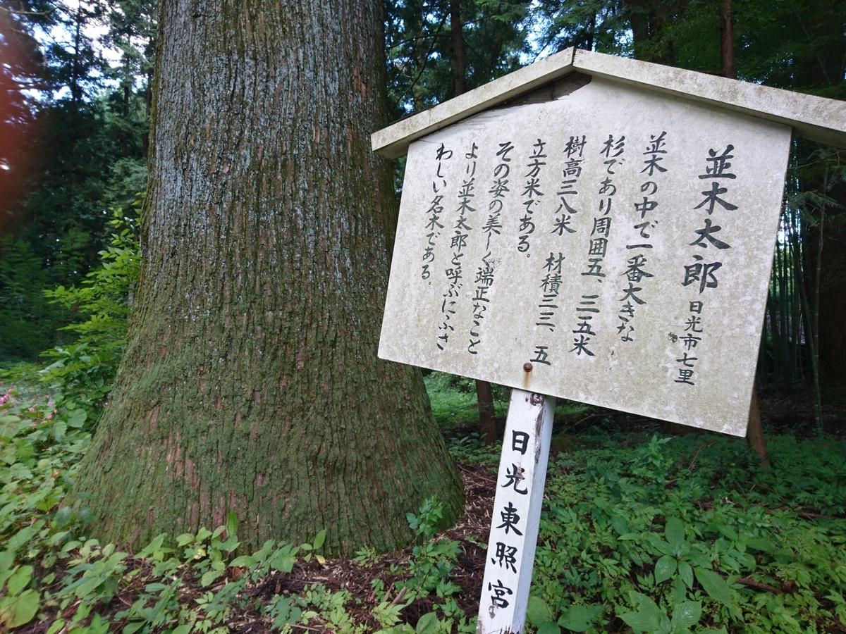f:id:gomashio-oyaji:20210501215107j:plain
