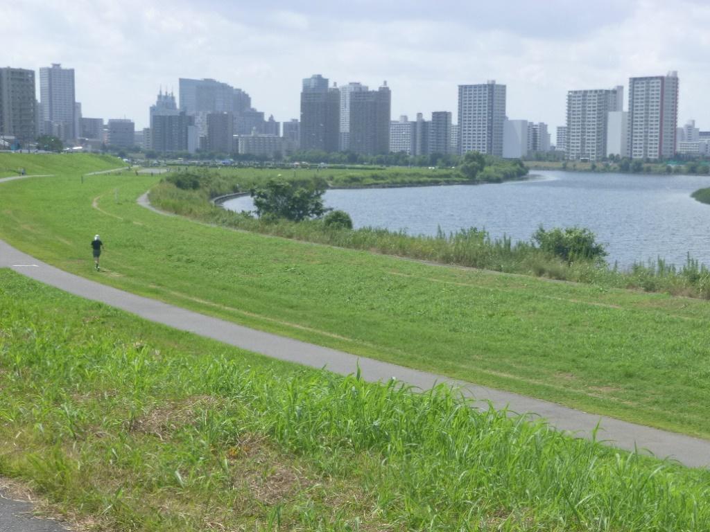 f:id:gomashio-oyaji:20210501220034j:plain