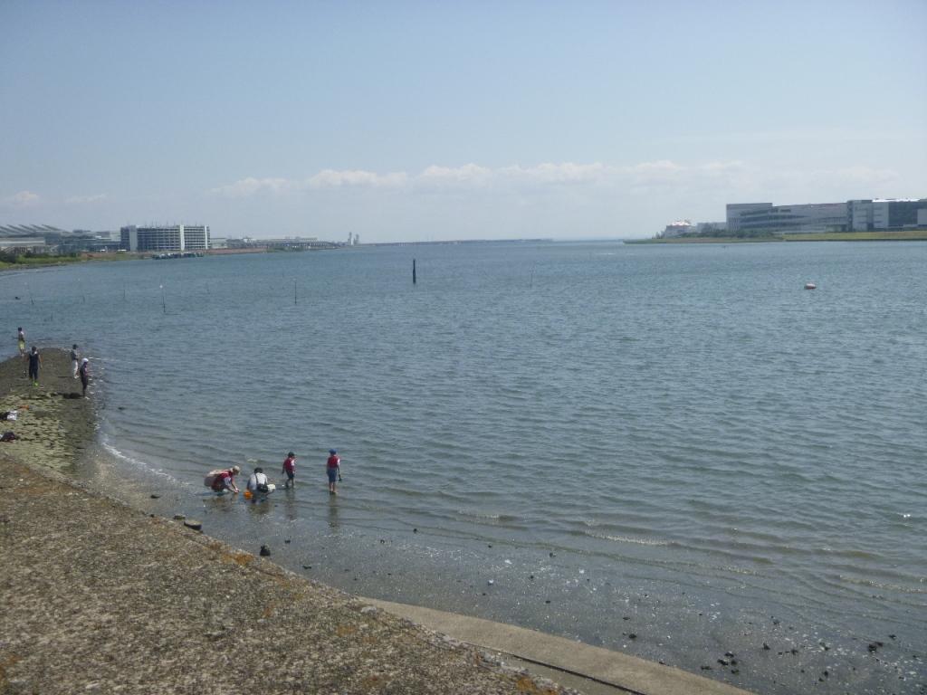 f:id:gomashio-oyaji:20210501220131j:plain