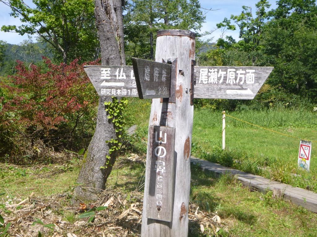f:id:gomashio-oyaji:20210613101214j:plain