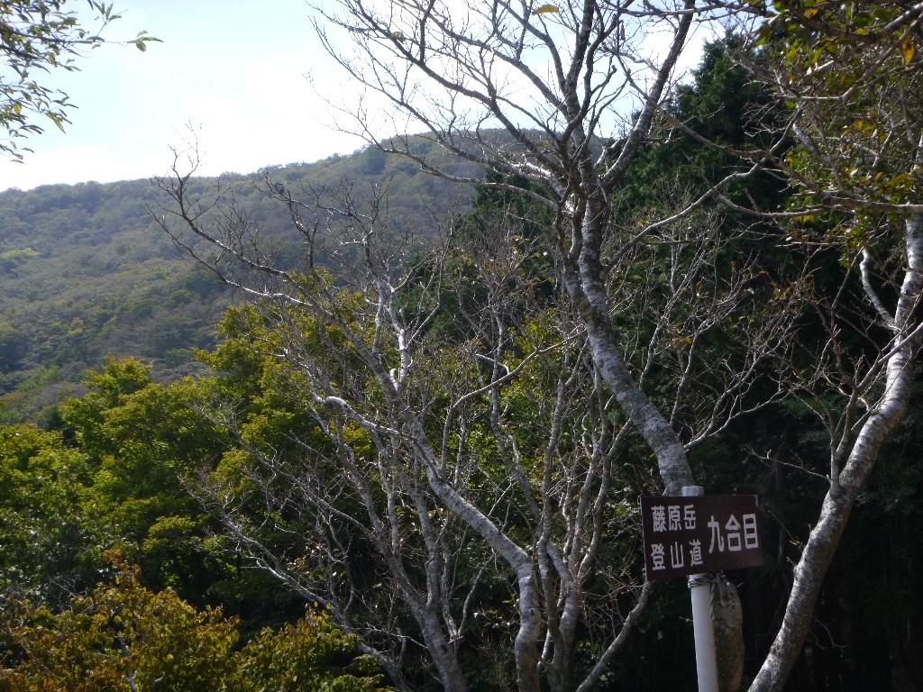 f:id:gomashio-oyaji:20210620213812j:plain