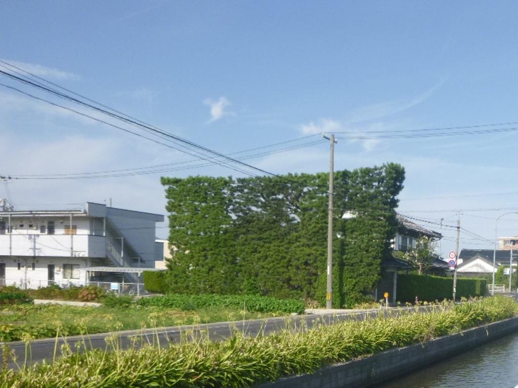 f:id:gomashio-oyaji:20210626200319j:plain