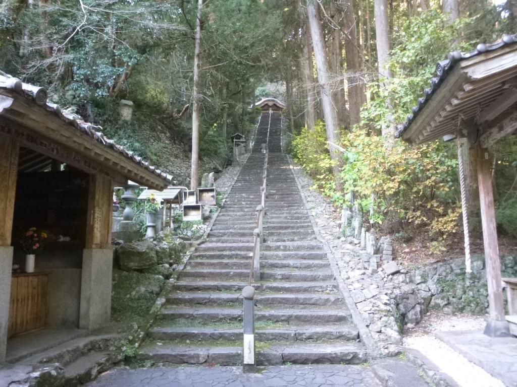 f:id:gomashio-oyaji:20210723145715j:plain