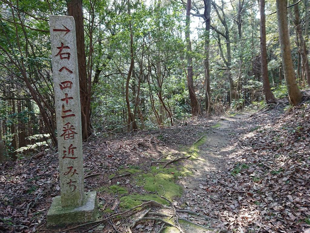 f:id:gomashio-oyaji:20210808191949j:plain