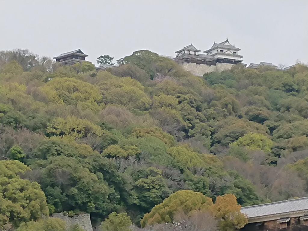 f:id:gomashio-oyaji:20210808193353j:plain