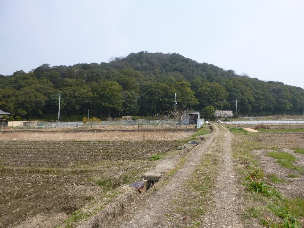 f:id:gomashio-oyaji:20210814161614j:plain