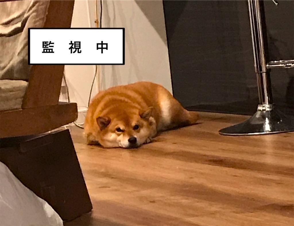 f:id:gomateishoku:20190811082218j:image