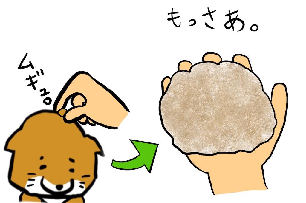 f:id:gomateishoku:20190814194923j:image