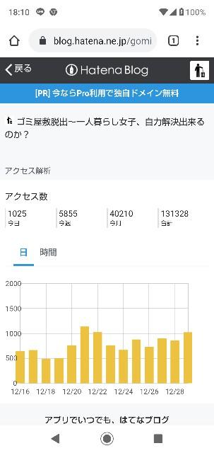 f:id:gomiko53:20191229181125j:plain