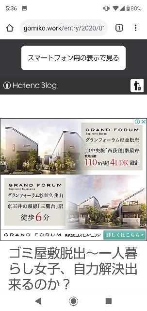 f:id:gomiko53:20200102053714j:plain