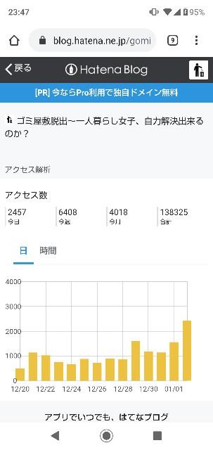 f:id:gomiko53:20200102234835j:plain