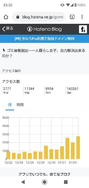 f:id:gomiko53:20200104233118j:plain