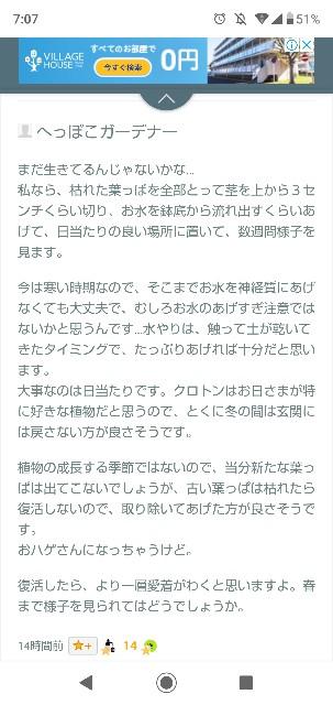 f:id:gomiko53:20200127070737j:plain