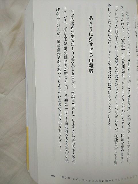 f:id:gomiko53:20200202131957j:plain
