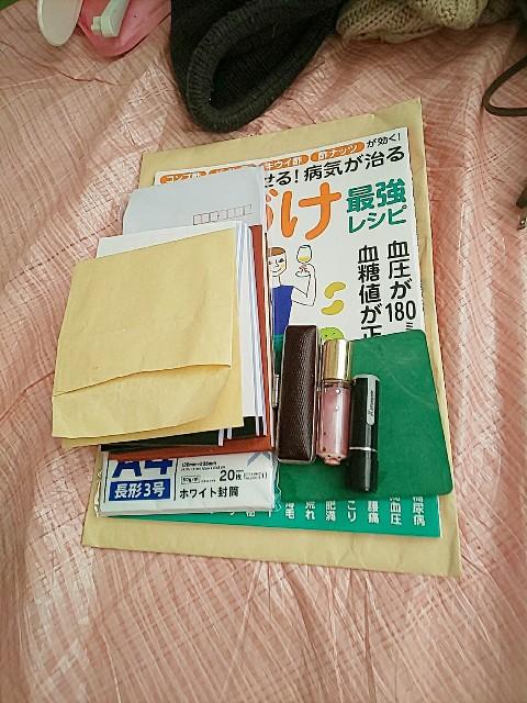 f:id:gomiko53:20200210154639j:plain