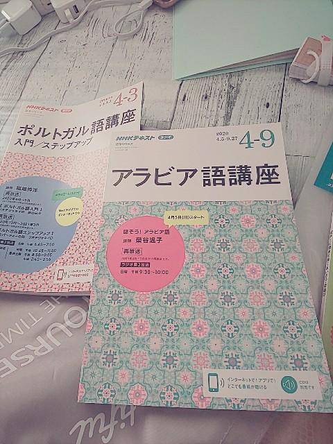 f:id:gomiko53:20200429160658j:plain