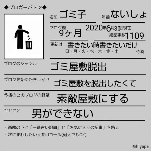 f:id:gomiko53:20200630203832j:plain