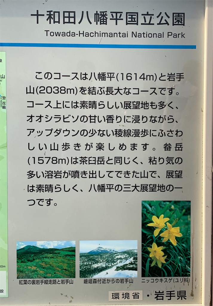 f:id:gomtbytsurugi:20190805212208j:image