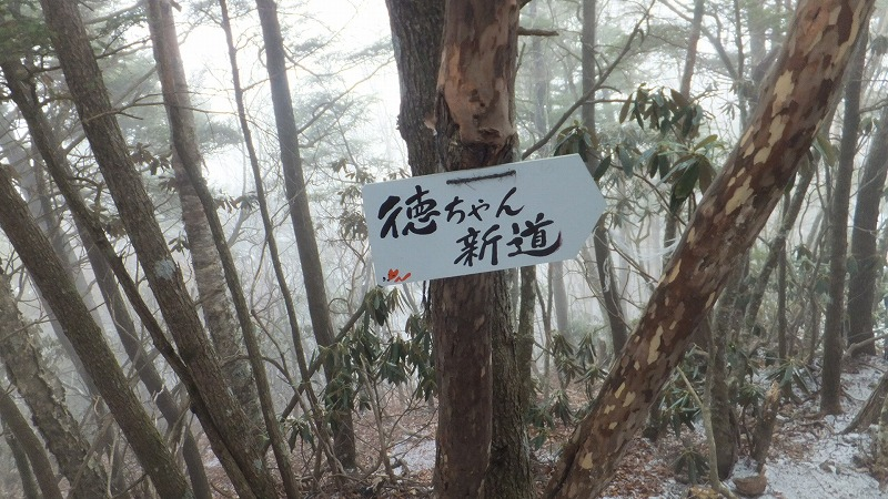 f:id:goniyoyo:20121217194933j:image