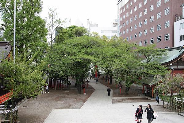 f:id:gonsuke08:20100424143800j:image