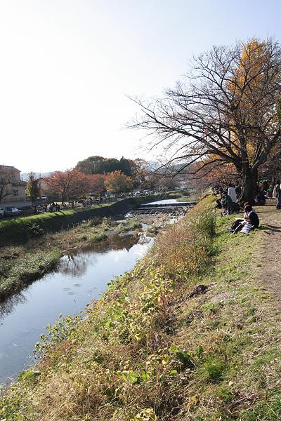 f:id:gonsuke08:20101121132447j:image