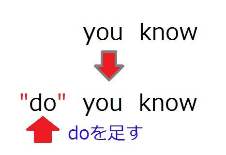 一般動詞の疑問文の作り方の図