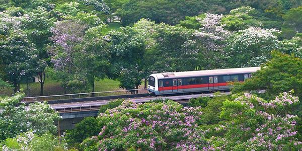 MRT シンガポールの鉄道
