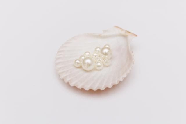 真珠の画像