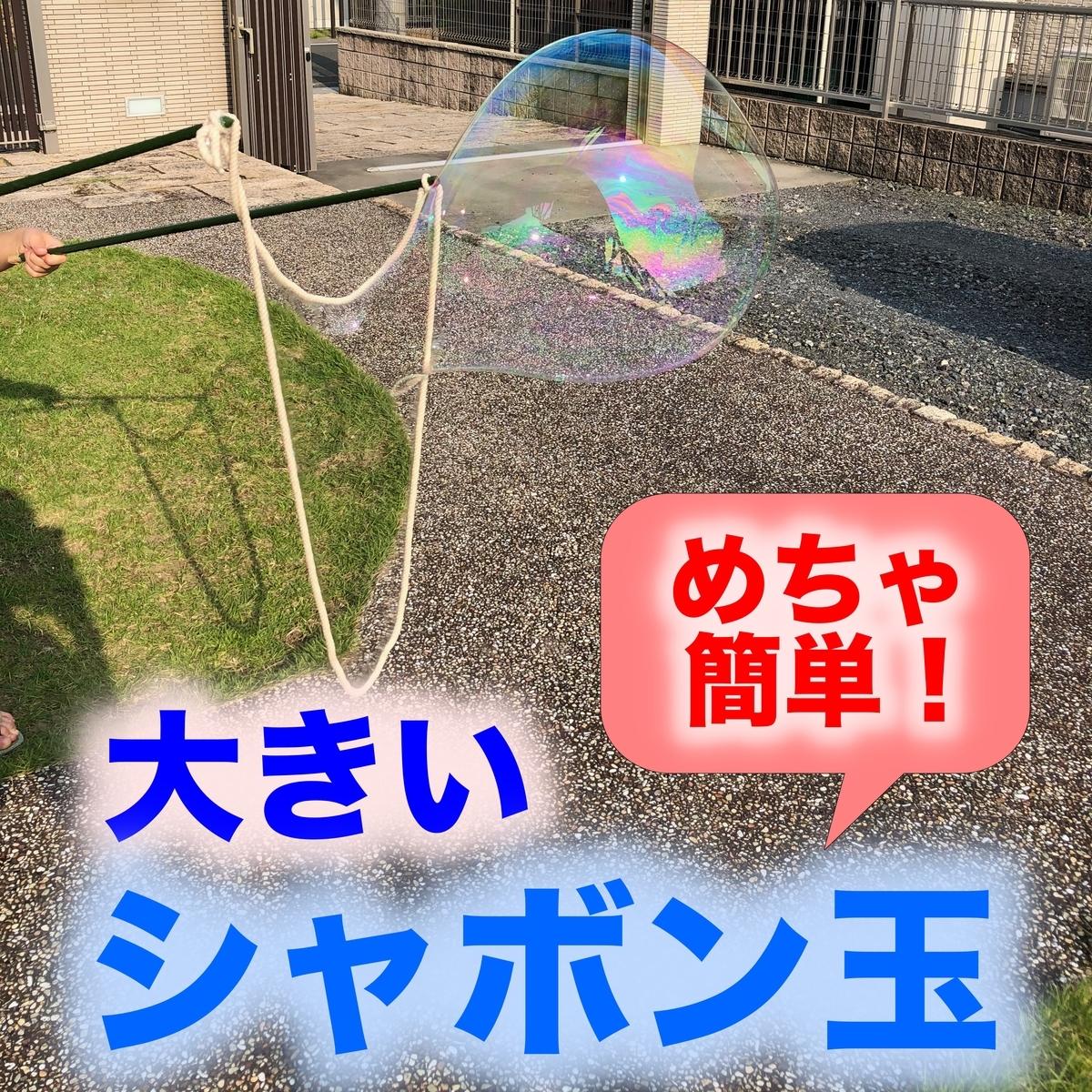 f:id:goodsun0212:20210110214940j:plain