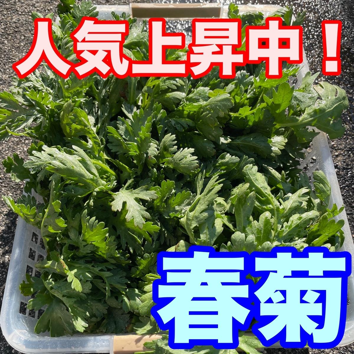 f:id:goodsun0212:20210125175538j:plain