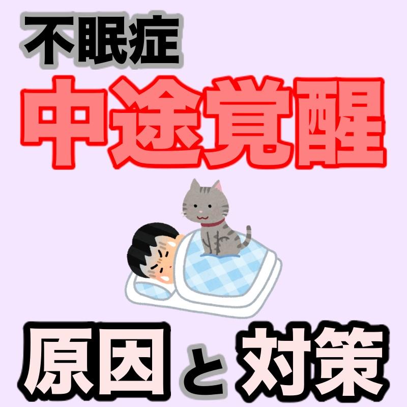 f:id:goodsun0212:20210201222754j:plain