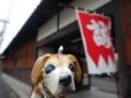 京都新聞写真コンテスト新撰組屯所旧前川邸やねん