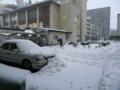 船堀に雪が降った日