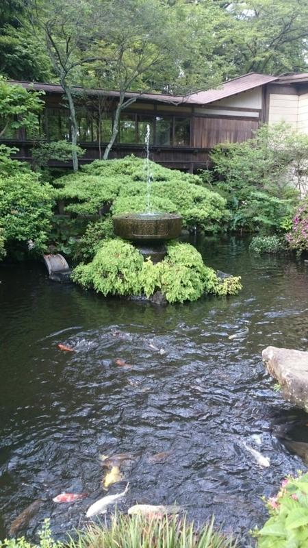 報徳二宮神社の池