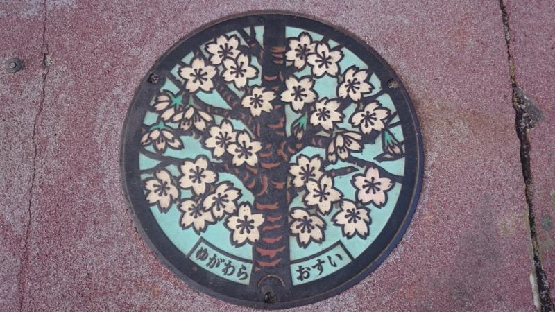 神奈川県足柄下郡湯河原町のマンホール(桜)[カラー]