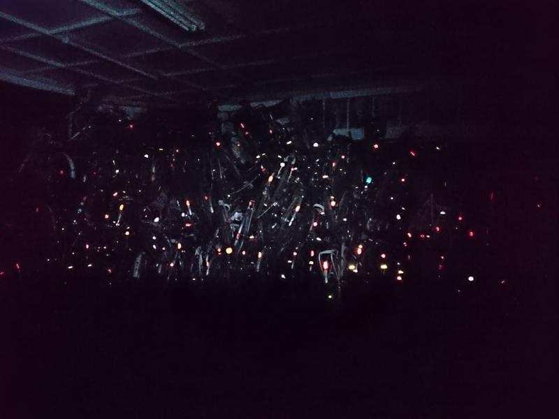 ヘッドライトに照らされキラキラと光る