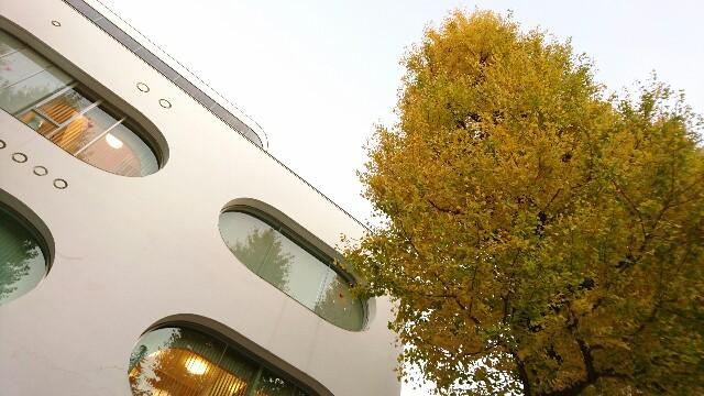 武蔵野プレイスとイチョウの木