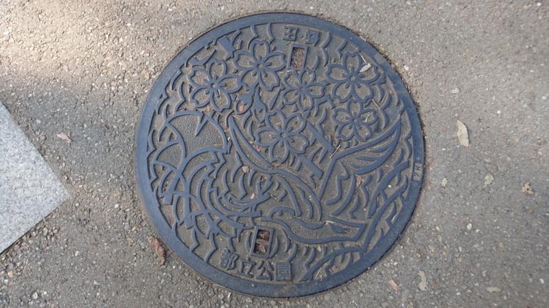 都立公園のマンホール(ソメイヨシノ、イチョウ、ユリカモメ)