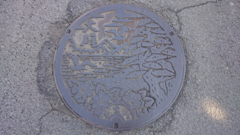 神奈川県中郡大磯町のマンホール(サザンカ、クロマツ、カモメ)