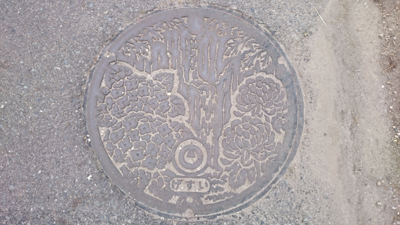 鳥取県東伯郡琴浦町のマンホール(大山滝、キク、アジサイ)