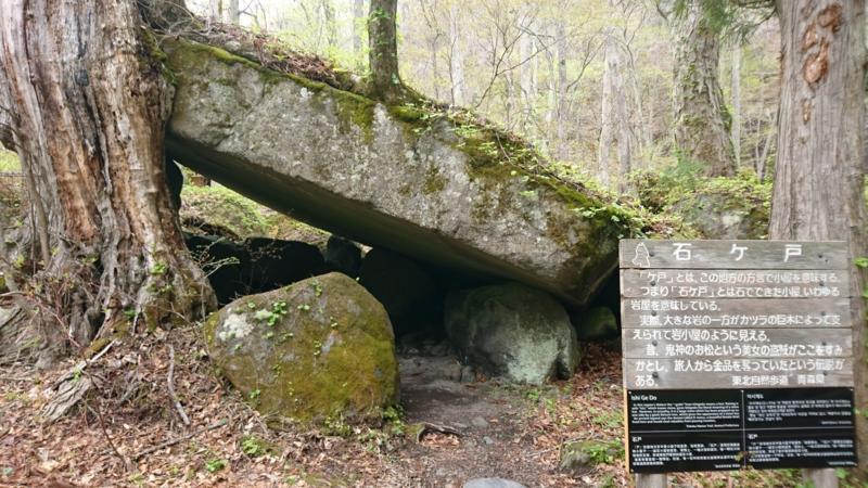 カツラの木に大きな岩が寄りかかった石ケ戸