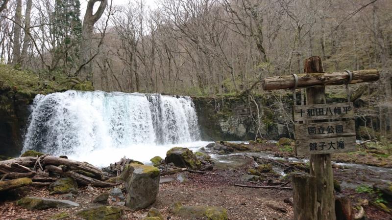 大迫力の銚子大滝