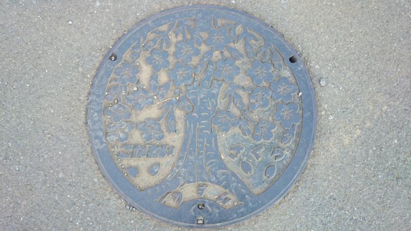 東京都小金井市のマンホール(桜)